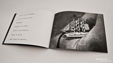 aparenta-ediciones-irene-leon-tebu-guerra_03