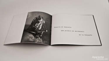 aparenta-ediciones-irene-leon-tebu-guerra_04
